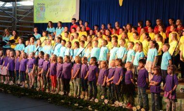 Prireditev ob 20-letnici OŠ Brinje Grosuplje