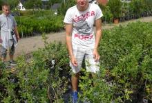 vrtnarija_ospp19