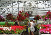 vrtnarija_ospp24