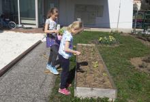 vrtnarjenje-8_1